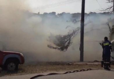 Πυρκαγιά στο Χέρωμα Βάρης (VIDEO)