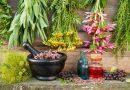 Παλαιό Φάληρο: Ομιλία για τα βότανα και τα καλλυντικά