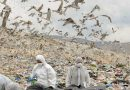 Γ. Σγουρός: Οριακή η κατάσταση στον ΧΥΤΑ Φυλής, από το 2014 η Δούρου τα έχει κάνει όλα λάθος